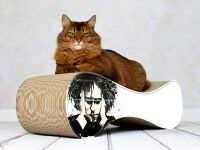 Preview: pop art by Federica Masini: cat scratcher Le Ver Robert Smith
