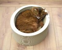 Preview: White cat bed Lovale - Made in Germany