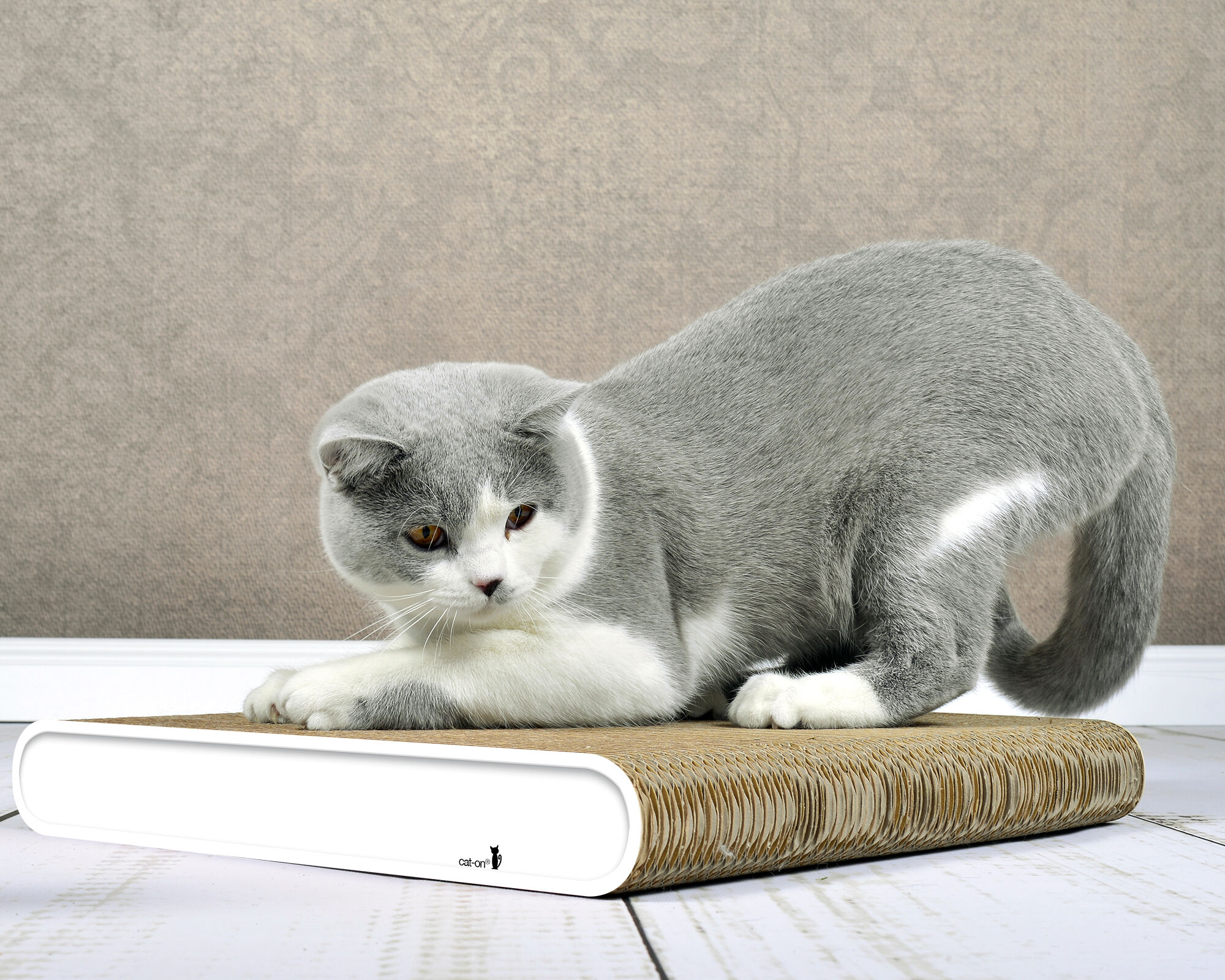 La Planche cat scratcher