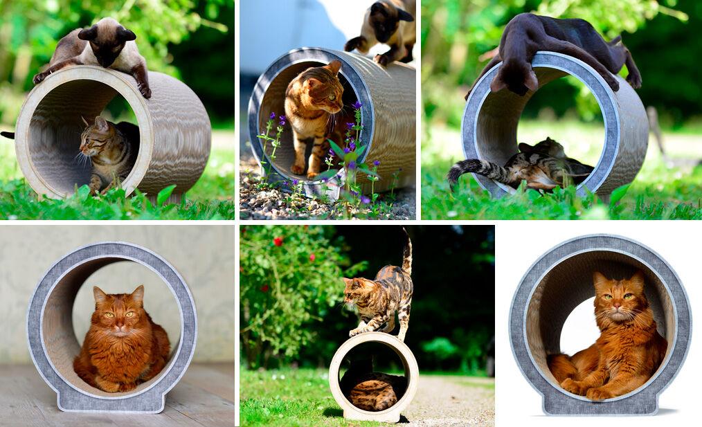 Kratzmöbel |Kratzpappe |Kratzbrett | Kratztunnel für Katzen Le Rond