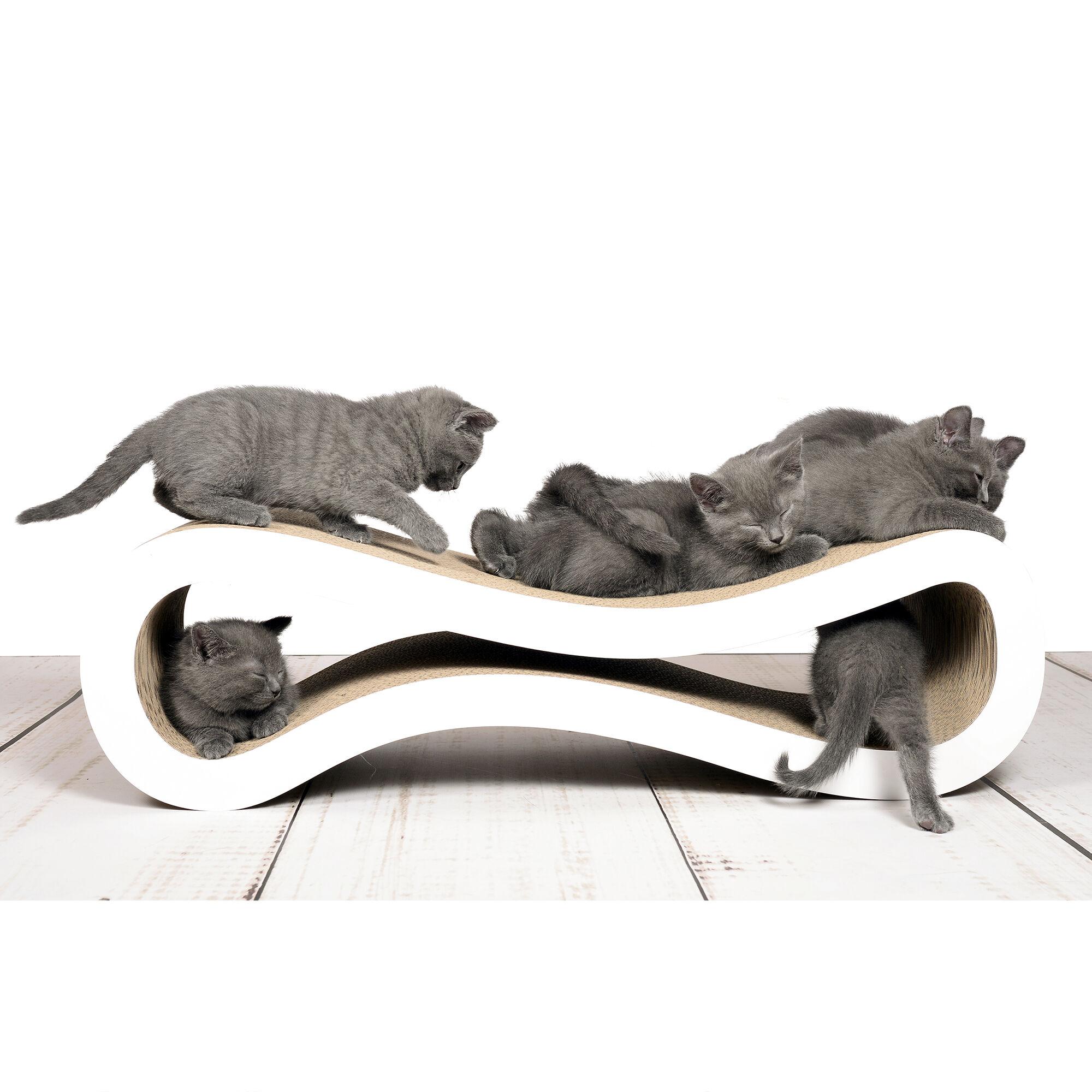 Cat Racer griffoir design