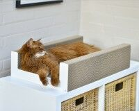 Purrfect Scratch Lounge Cat Box
