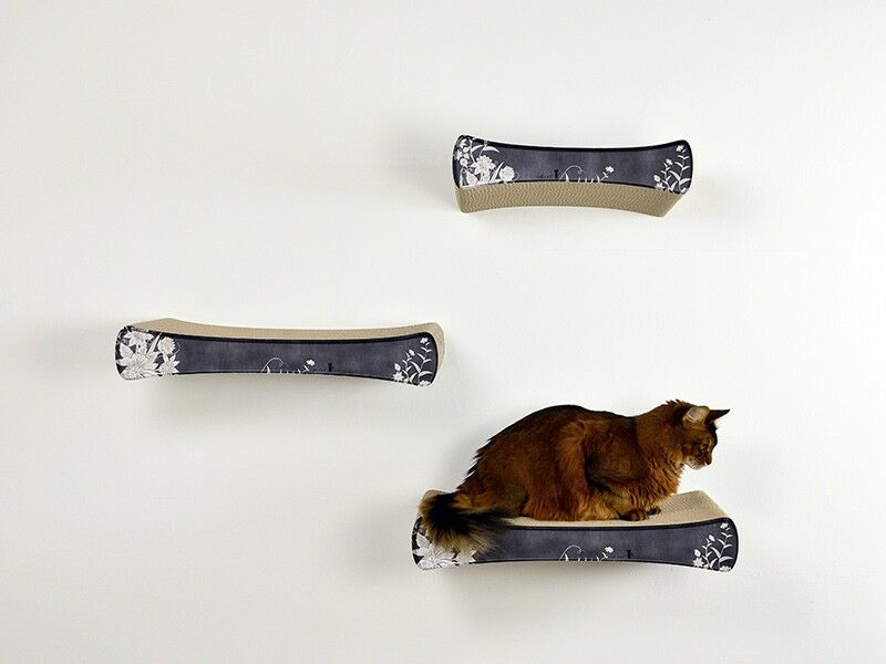 cat on kratzbaum wandkratzbaum kletterm bel und wandschalen f r die individuelle kletterwand. Black Bedroom Furniture Sets. Home Design Ideas