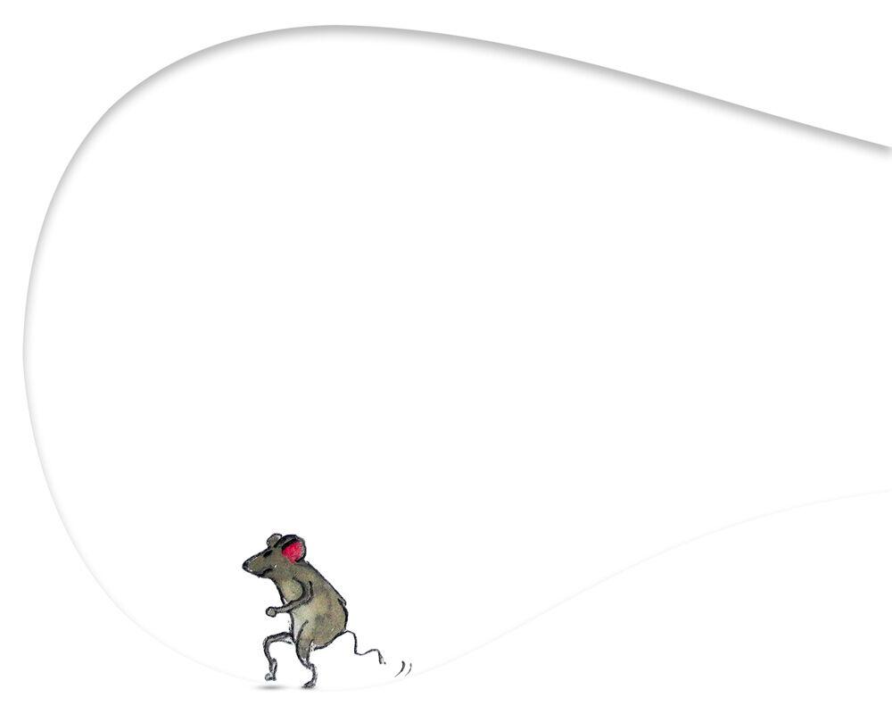 Feline Kratzmöbel