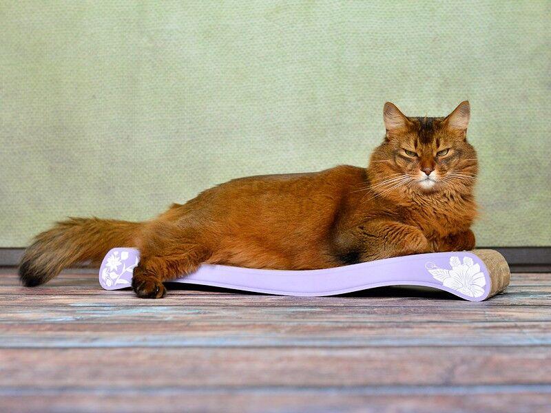 kratzwelle la ola cat on kratzbrett aus hochwertiger wellpappe made in germany cat on. Black Bedroom Furniture Sets. Home Design Ideas