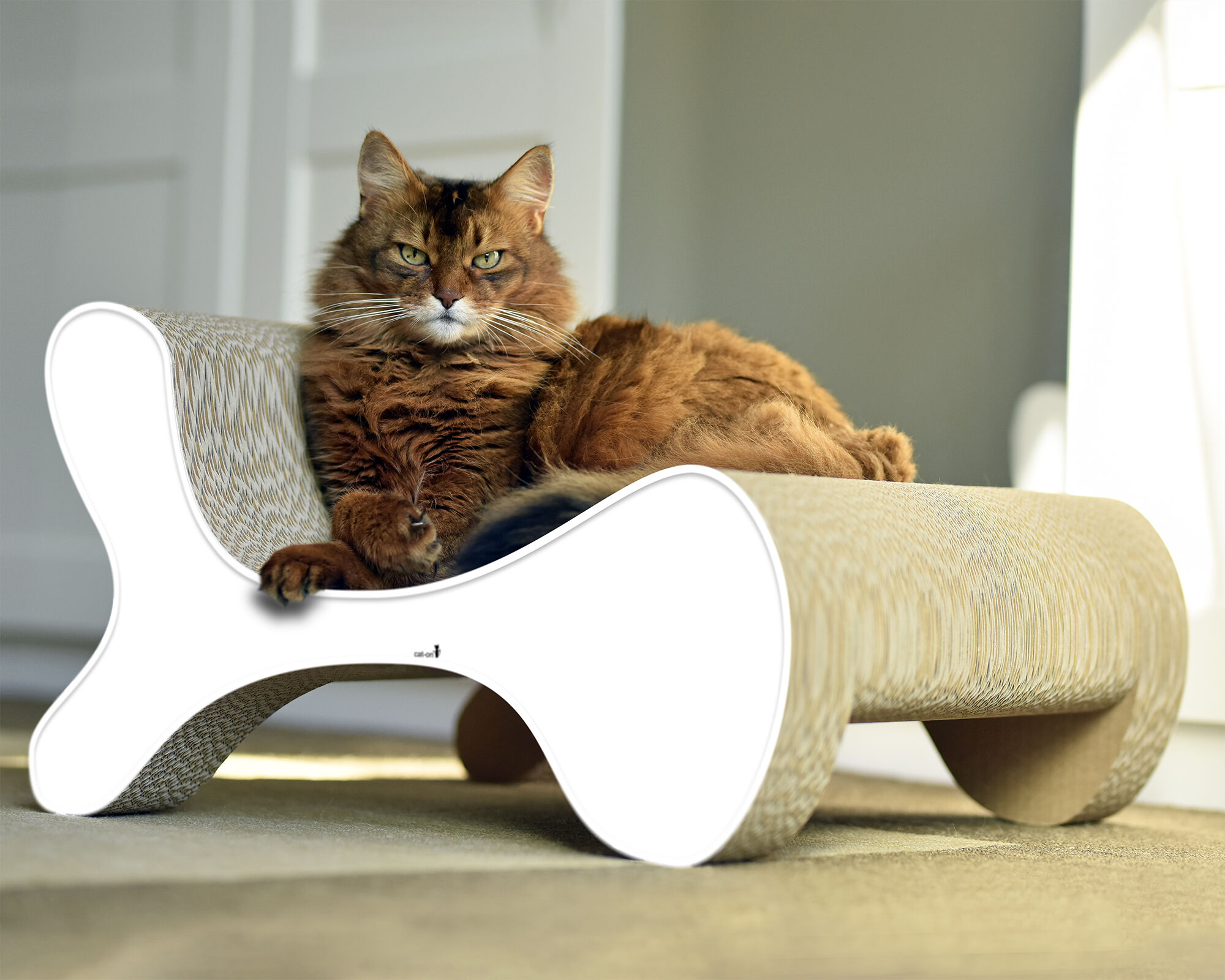 Molecular Fauteuil design cat scratcher