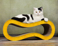 Yellow cat scratching wave Singha M - Made in Germany - 004e