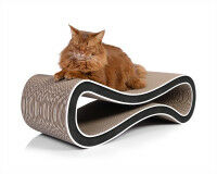 Preview: Cat Racer scratch post