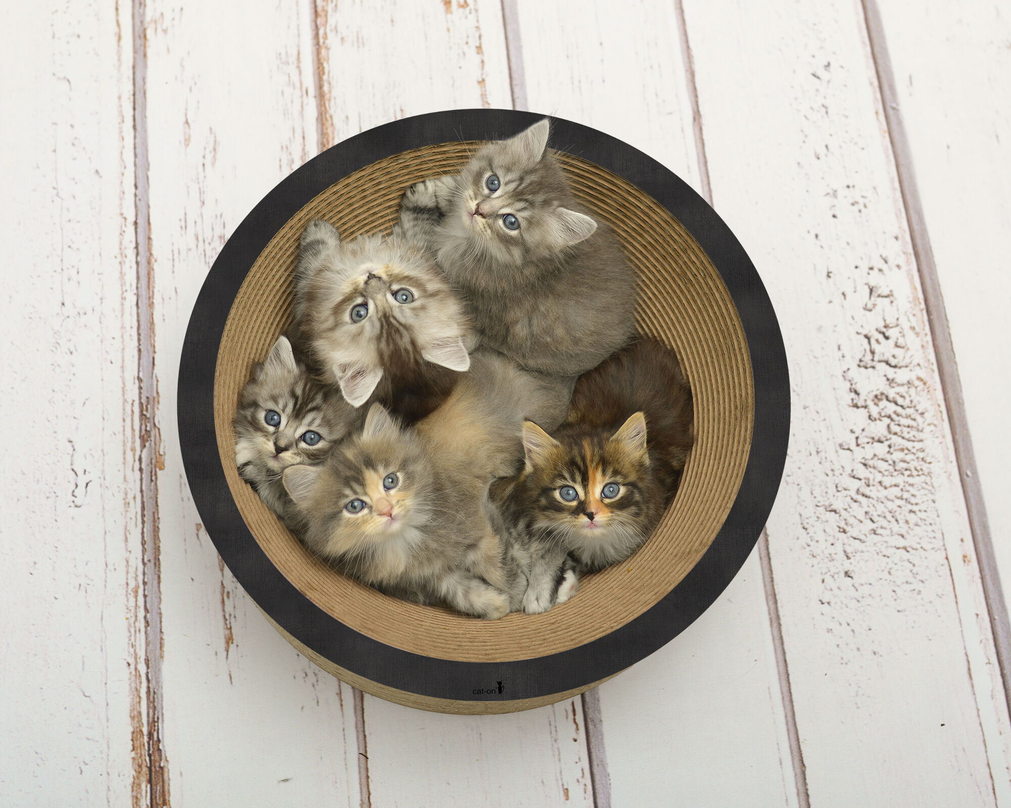 La Coupe cat bowl