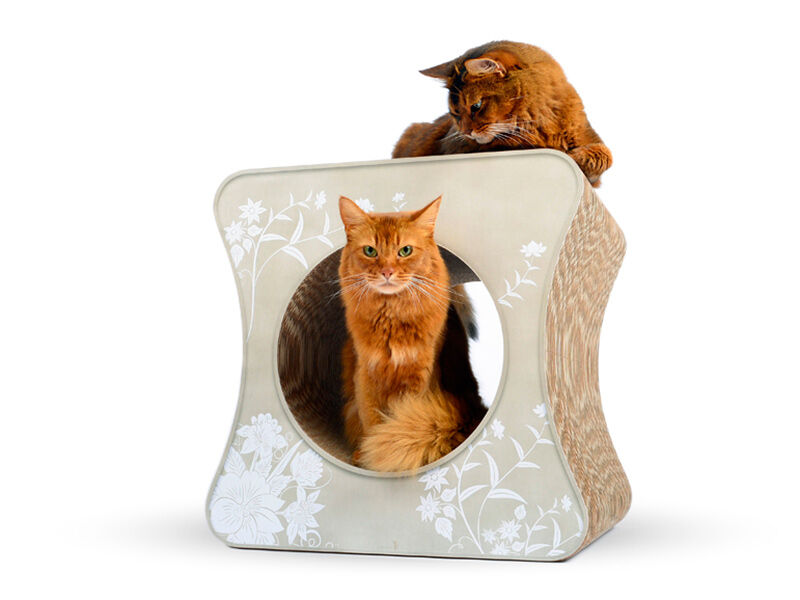 Le cube design cat scratch post