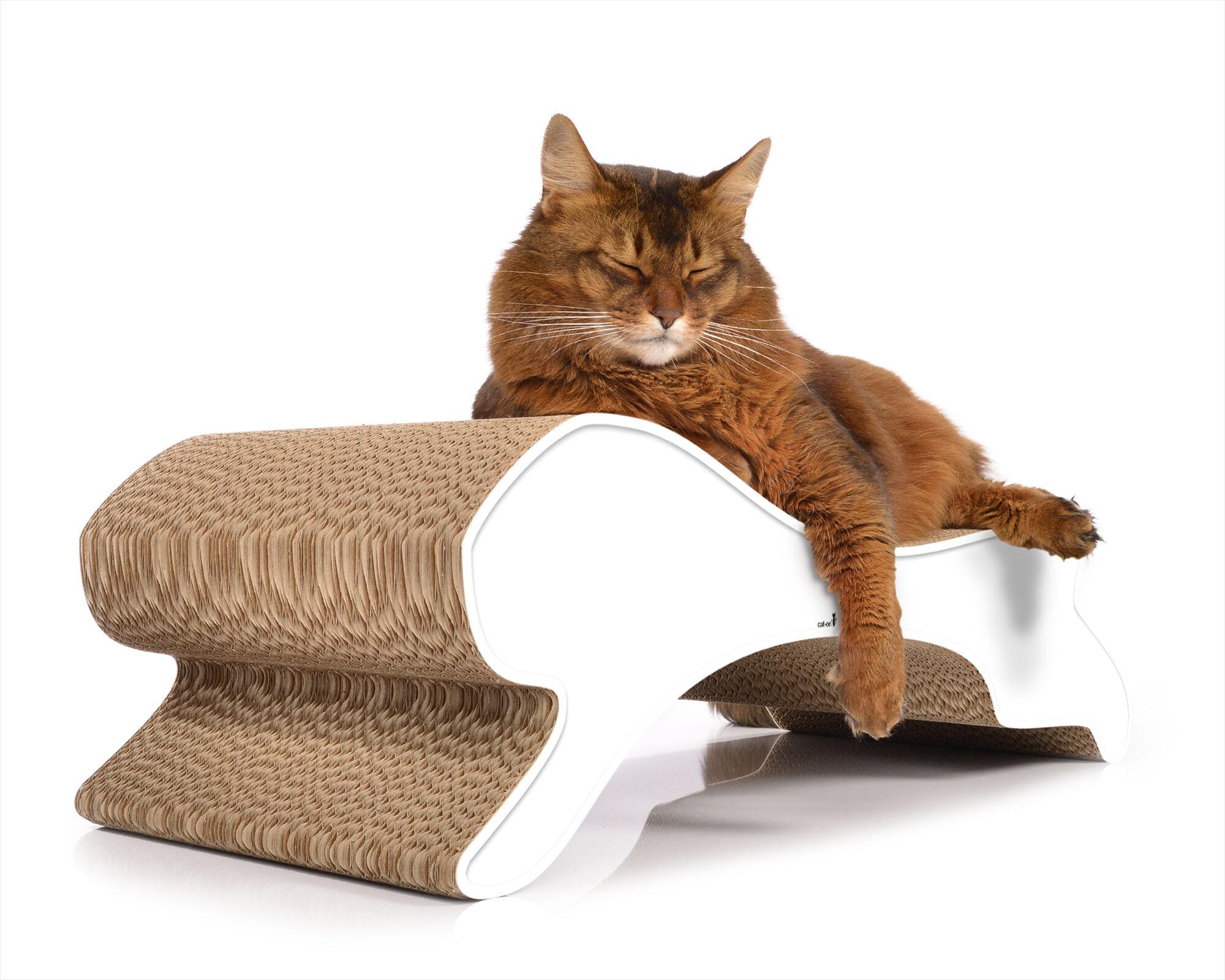 Motion griffoir pour chats