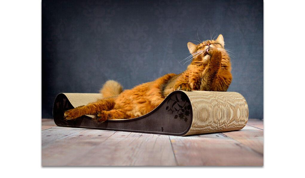kratzm bel f r katzen katzenm bel aus wellpappe cat on. Black Bedroom Furniture Sets. Home Design Ideas