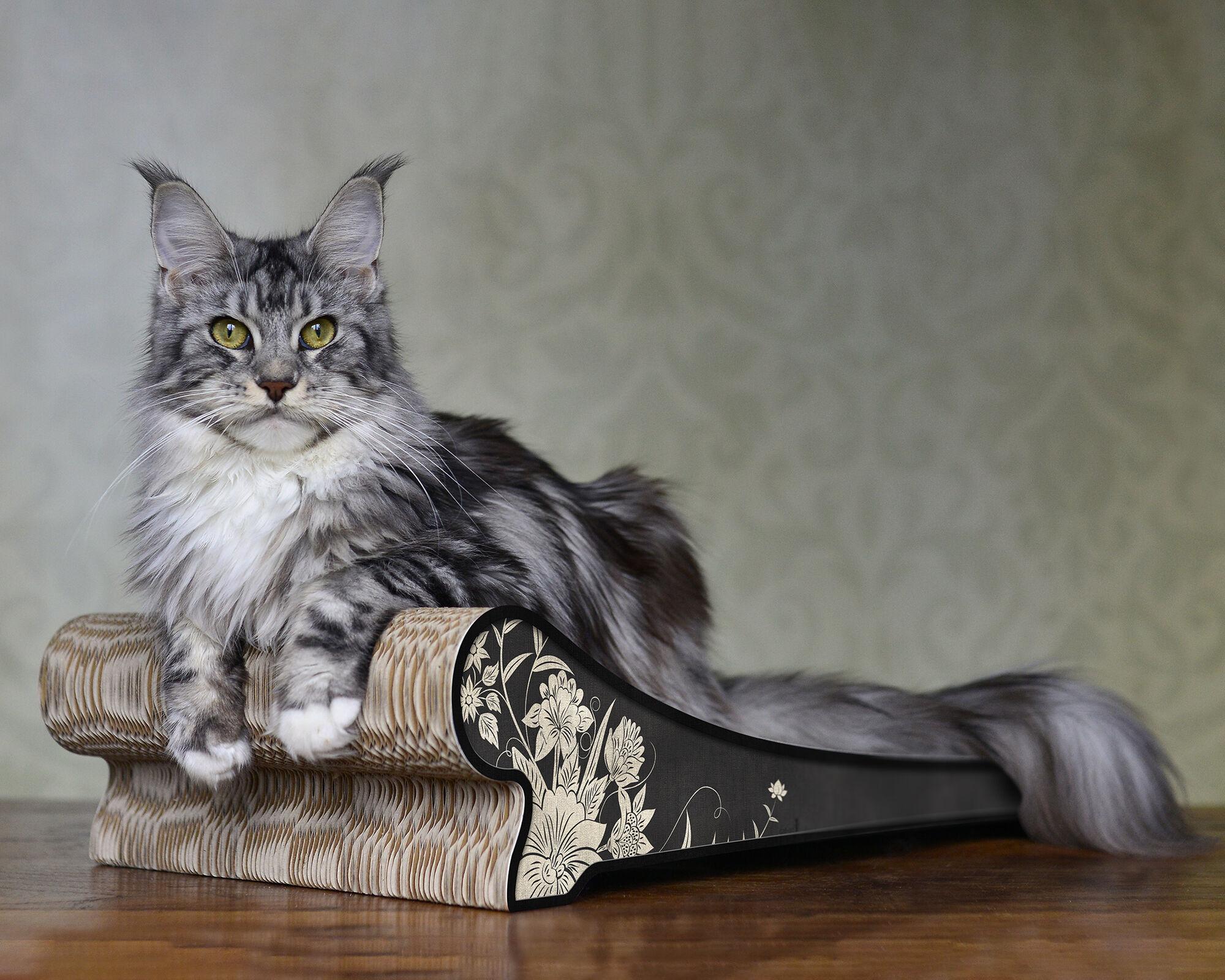 Lounger Katzenliege
