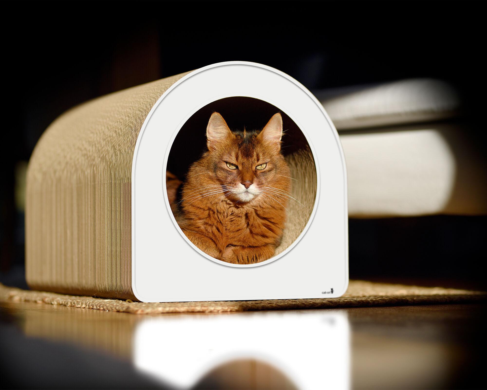Le Tube L griffoir en carton