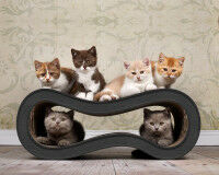 Singha M design cat tree