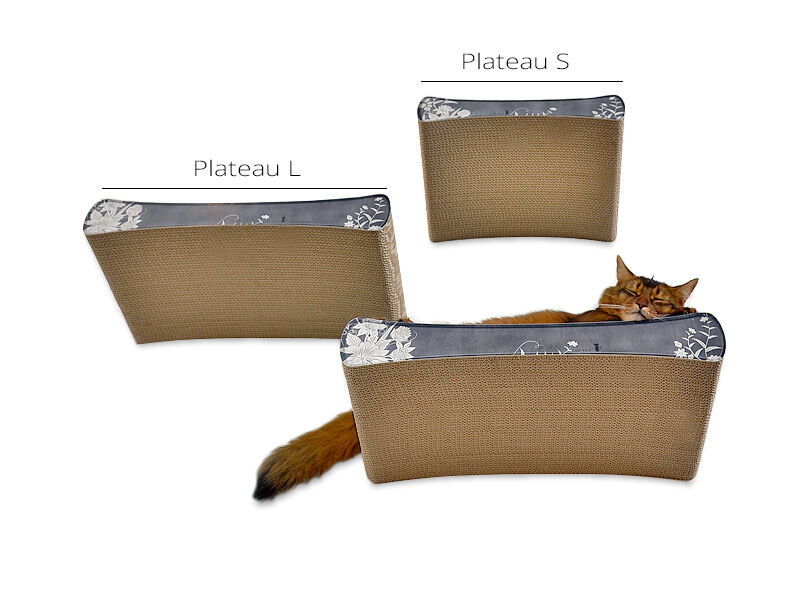 Le Plateau S cat shelve
