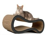 Aperçu: Griffoir design en carton cat-on Singha L anthracite