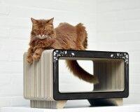 Preview: La Tele cat scratcher