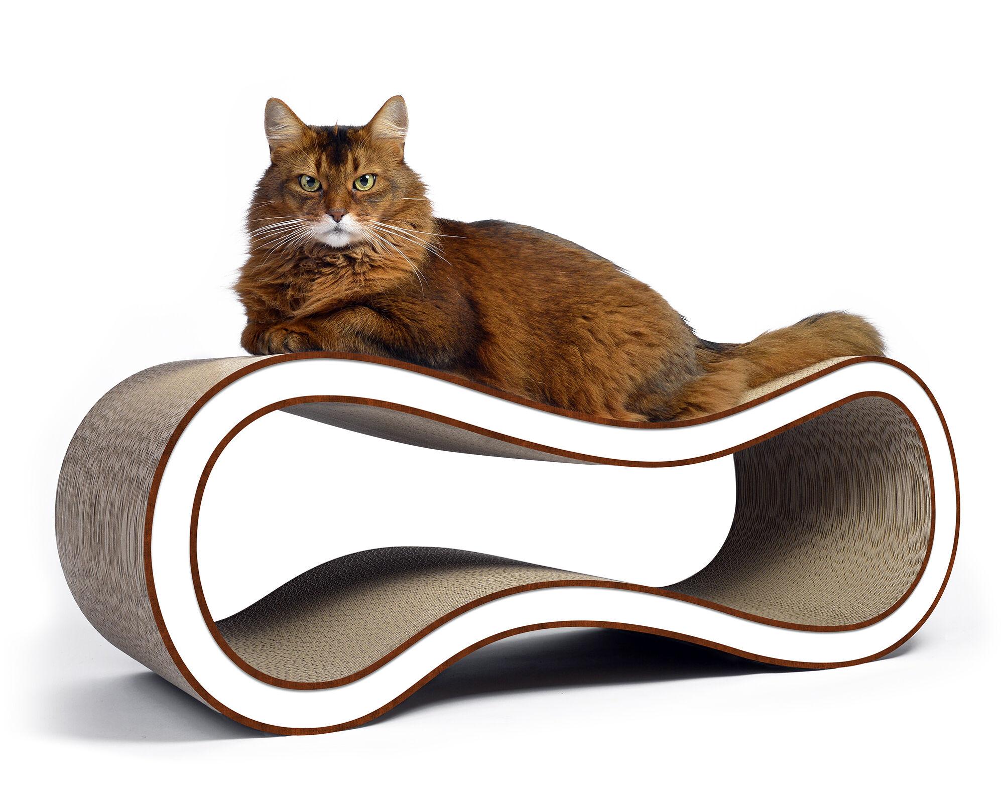 Singha L griffoir design