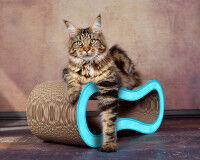 Preview: Cat scratching post de luxe Singha M - color light blue