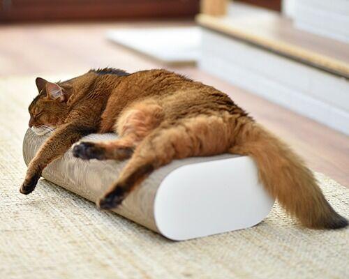 Kratzmöbel für Katzen, Kratzbaum neu interpretiert