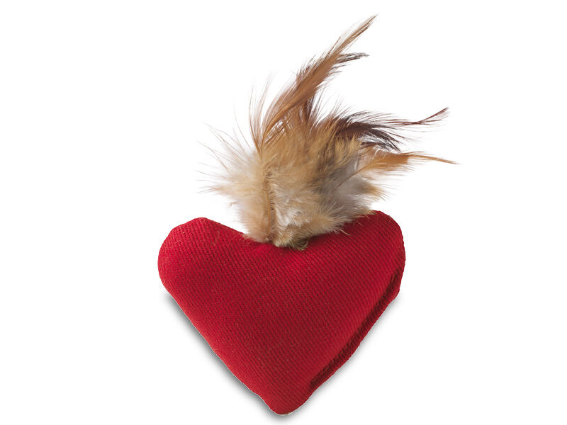 Heart with Feather
