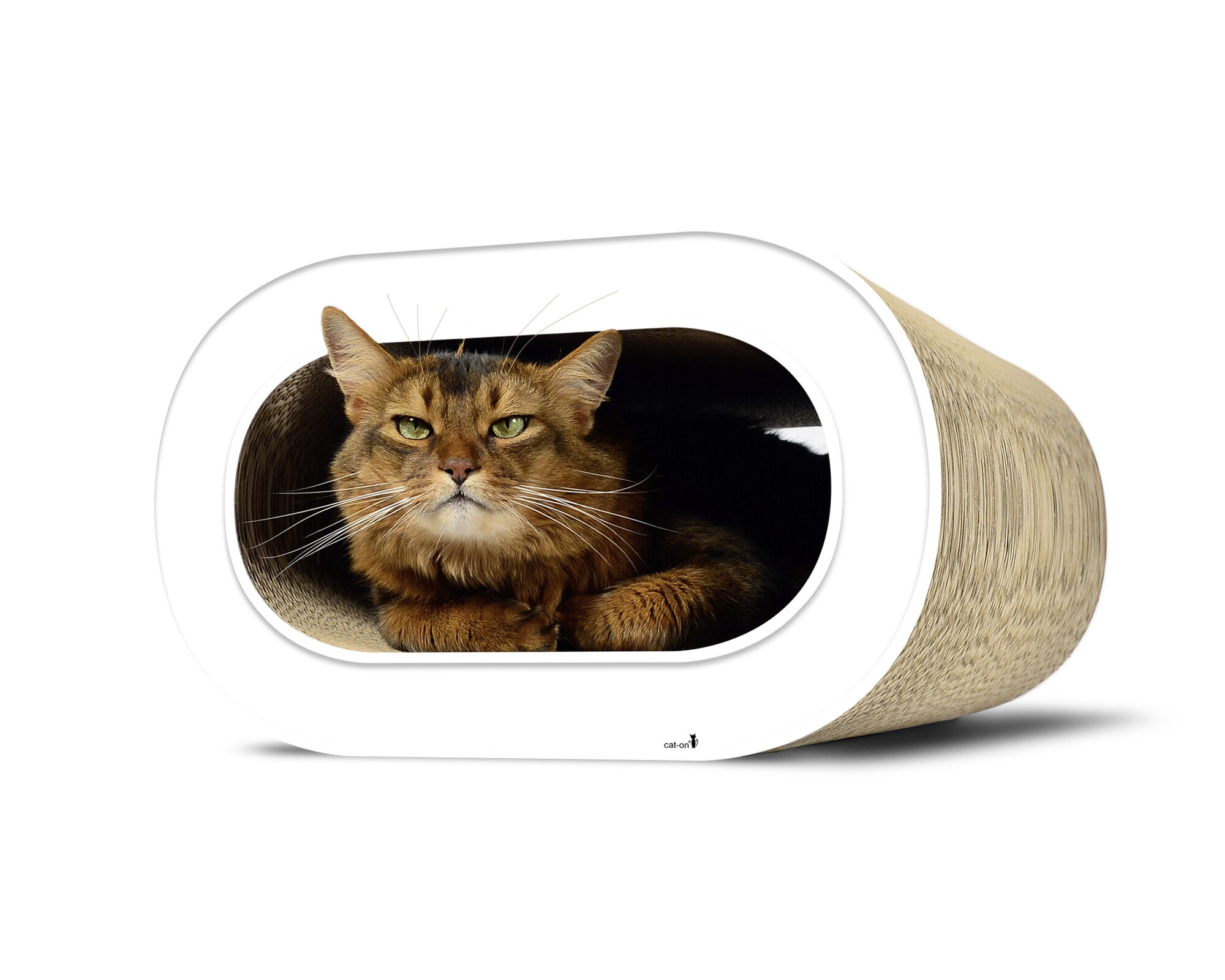 Le Tronc design cat scratcher