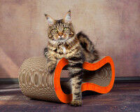 Preview: orange cat scratcher Singha M handmade in Germany