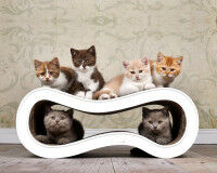 Preview: Mutifunctional cat lounge Singha M - Made in Germany - 000a - white