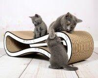 Preview: Cat Racer design scratch post