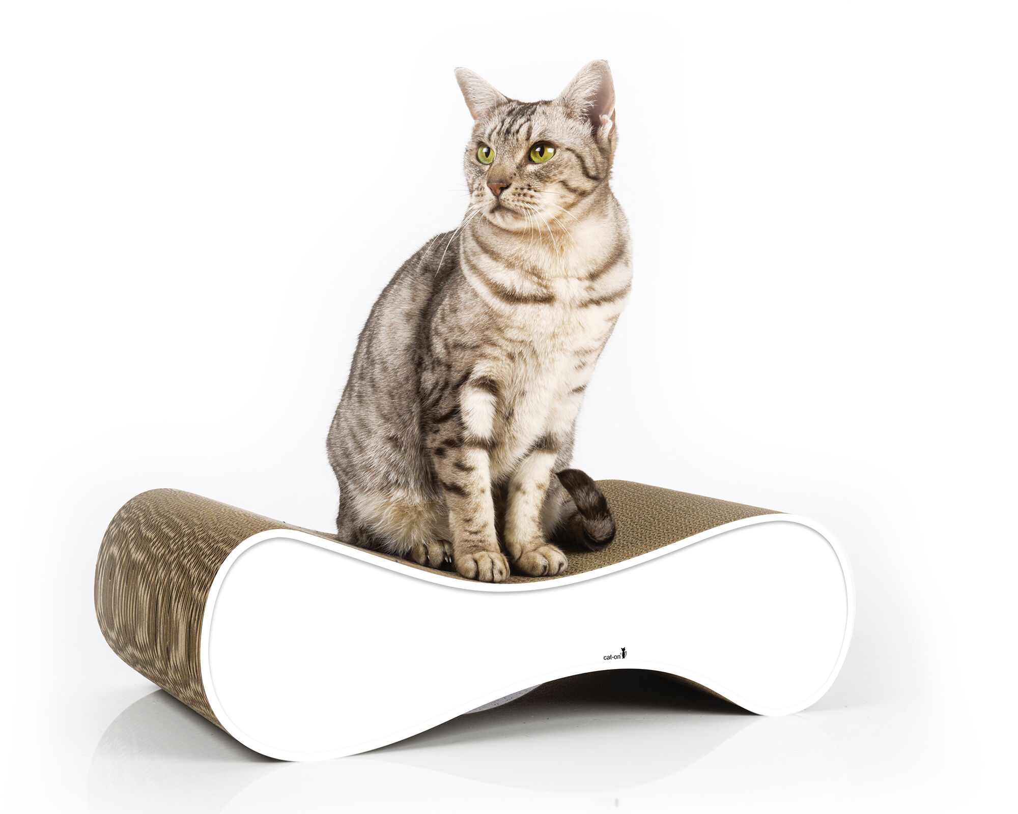 Le Ver S design scratch post