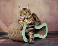 Preview: mint-green cat scratching post Singha M