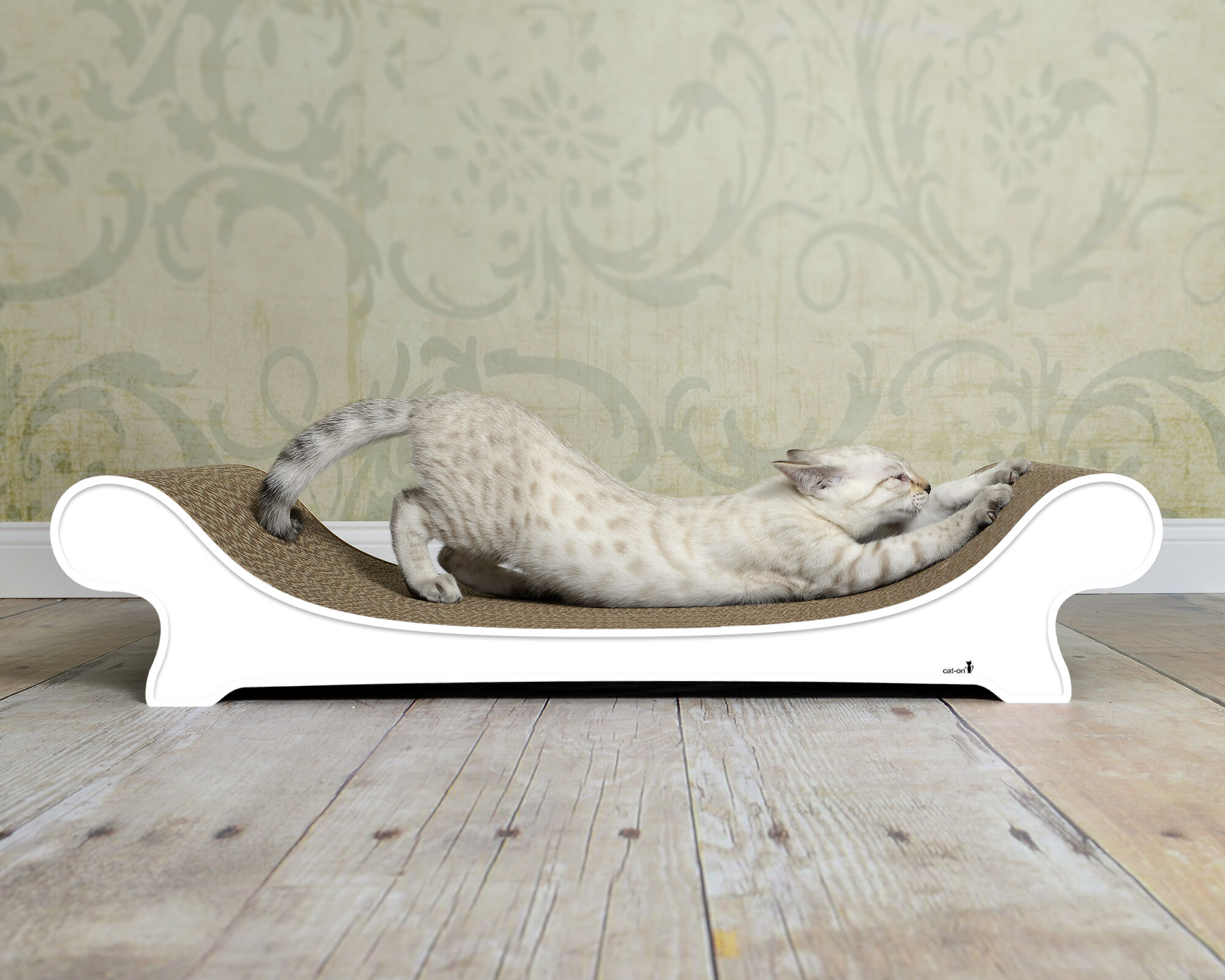 Le Canapé cat sofa