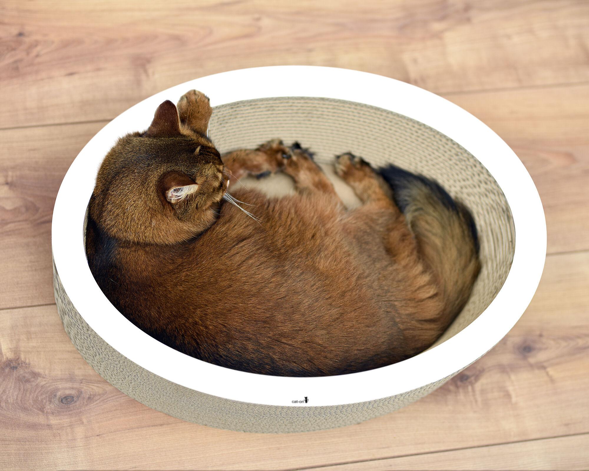 Lovale Katzenkorb