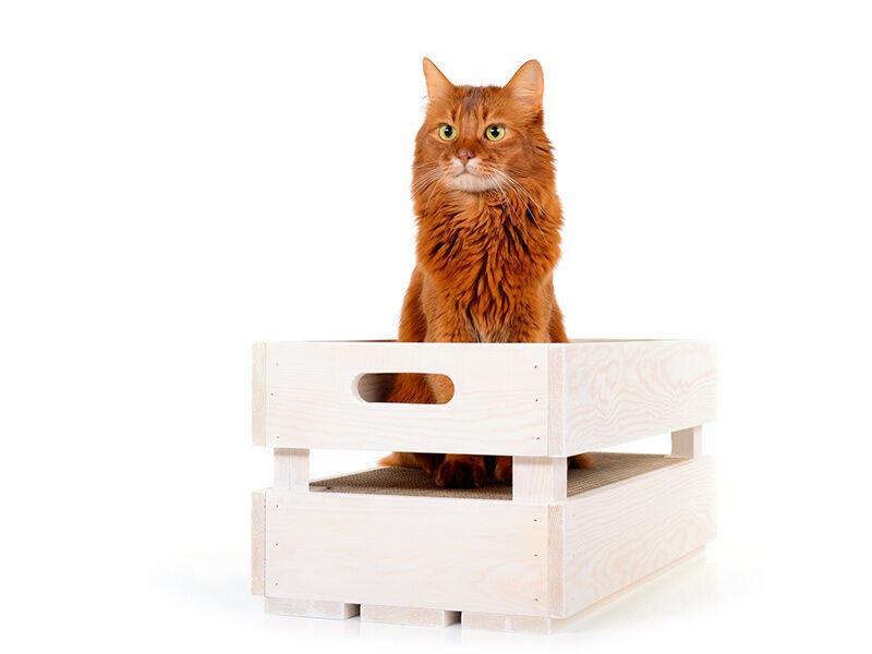 Katzenstiege S Fichte-geweißt Kratzbox
