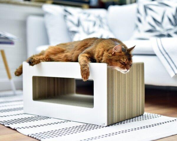 design-kratzmoebel_cat-on_loop_katzen-kratzbaum-modern-nachhaltig-wellpappe-weiss