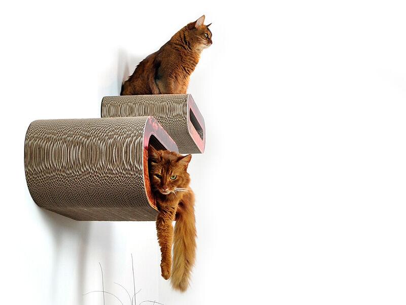 Set 2in1 design cat shelves