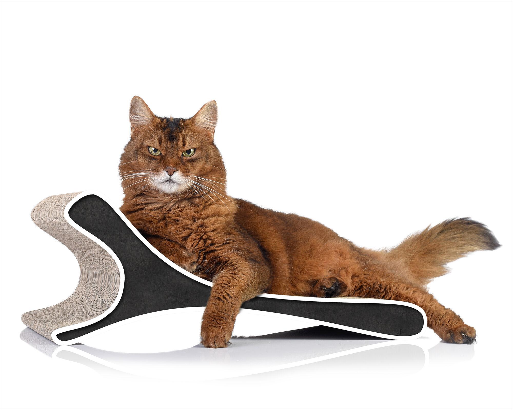 Feline cat scratcher