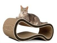 Aperçu: Bel arbre à chat tendance pour chats de qualité allemande