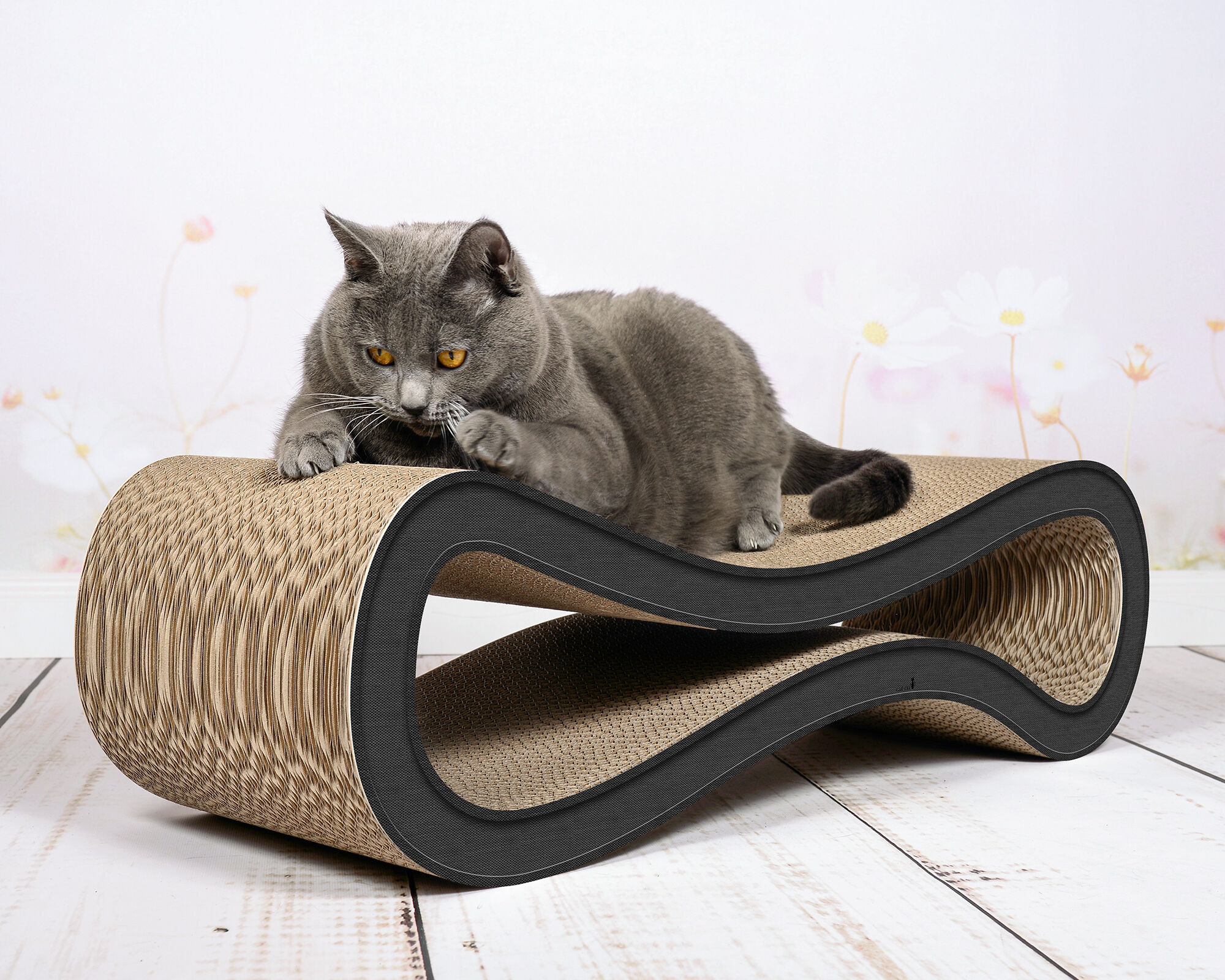 Cat Racer design scratch post