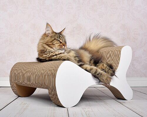 cat-on Kratzbaum-Alternativen und Kratzmöbel für Katzen Made in Germany
